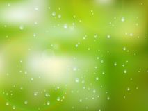Natural water drops on glass. plus EPS10 Royalty Free Stock Photography