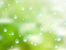 Natural water drops on glass. plus EPS10 Stock Image
