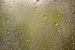 Natural water drops on window glass Stock Images