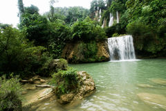 Natural water fall in Jungle Stock Image
