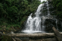 Natural water fall in Jungle Stock Photo