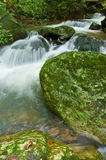 Natural water flow Stock Image