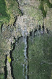 Natural water source. Source close to a moist cavity in the rock covered with moss Stock Image