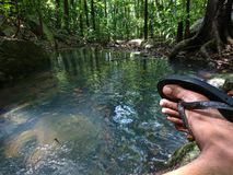 Freedom is cool and green. A natural water spring, gampaha, sri lanka royalty free stock photography