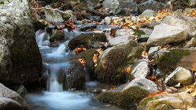 Natural water stream in the forest. In mountain Dirfis in Evia Greece Royalty Free Stock Photos