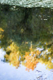 Natural Watercolor. Reflection of changing leaves in rippling water giving a natural watercolor painting effect Royalty Free Stock Photo
