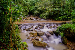 Natural waterfall. In a forest at Sabah Royalty Free Stock Photos