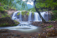 Natural waterfall in forest Royalty Free Stock Image
