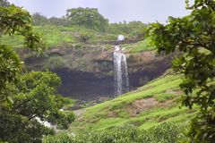 Natural waterfall surrounded by lush green vegetation. Spectacular view of a natural waterfall surrounded by lush green vegetation at Bhandardhara, a monsoon royalty free stock photos