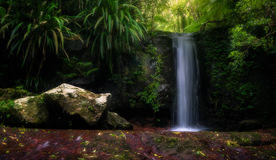Natural Waterfall Stock Photography