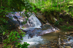 Natural Waterfall in a Tropical, Wooded Nature Area Stock Photo
