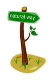 Natural way vector illustration