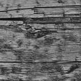 Natural Weathered Grey Tan Taupe Wooden Board, Cracked Ruined Rough Cut Sepia Wood Texture, Large Detailed Old Aged Gray Lumber. Background Vertical Macro Royalty Free Stock Photography