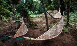 Natural weave hammock in forest. Natural weave hammock under the tree hanging in forest Royalty Free Stock Images