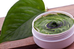 Natural wellness spa creme Royalty Free Stock Images