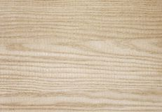 Natural white ash wood - Stock Image Stock Images