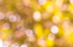 Natural white blurred background. Stock Photo