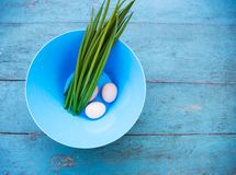 Natural white eggs in a blue bowl Royalty Free Stock Photo