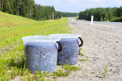Natural wild blueberries in buckets on roadside Royalty Free Stock Photo
