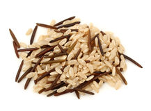 Natural and wild rice Stock Image