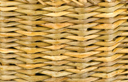 Natural willow texture Royalty Free Stock Photo
