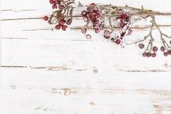 Natural winter background Stock Photos