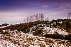 Natural Winter Landscape Stock Images