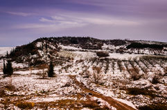 Natural Winter Landscape Royalty Free Stock Photo
