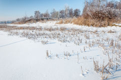 Natural winter landscape Royalty Free Stock Photography