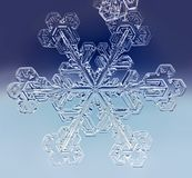 Natural winter Snowflake