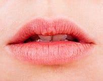 Natural women's sensual lips closeup Royalty Free Stock Images
