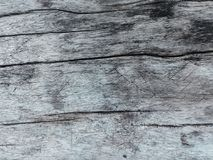 Natural Wood Background Stock Photography
