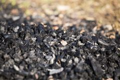 Natural wood charcoal biomass for energy. Concept royalty free stock photo