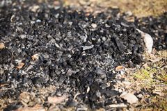 Natural wood charcoal biomass for energy stock image