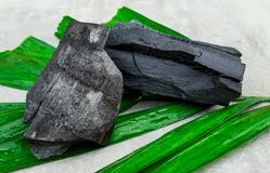 Natural wood charcoal on green leaf isolated on grey background. Natural wood charcoal on green leaf isolated royalty free stock photography