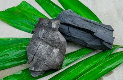 Natural wood charcoal on green leaf isolated on grey background. Natural wood charcoal on green leaf stock photo