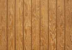 Natural wood plank with texture Royalty Free Stock Photo