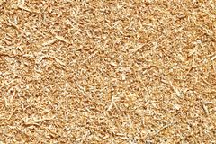 Natural wood sawdust background. Waste wood processing in the wo Stock Photo