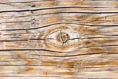 Natural wood texture closeup Stock Images