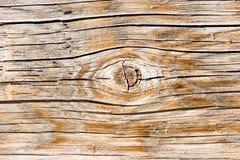 Natural wood texture closeup Stock Images