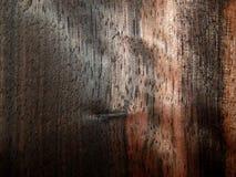 Natural wood veneer wood ebony Eben Makassar Royalty Free Stock Photography