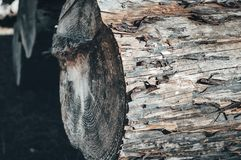 Natural wooden background - closeup of chopped firewood stock photo
