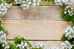Natural wooden background with flowers fruit tree Royalty Free Stock Photo