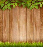 Natural wooden background with leaves and grass. Stock Photo