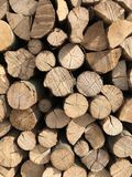 Natural wooden background. Pile of wood logs. Firewood, lumber, brown, nature, stack, texture, forest, tree, timber, bark, cut, environment, fuel, material royalty free stock images