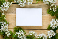 Natural wooden background with white flowers fruit trees Stock Image