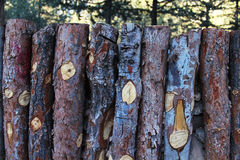 Natural wooden fence of rough pieces of wood and forest on backg. Round royalty free stock photos