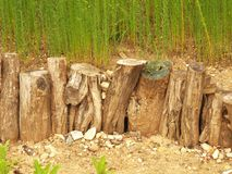 Natural wooden horizontal palisade made from natural trunks, wooden fence between footpath and grass Royalty Free Stock Image