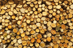Natural wooden logs Royalty Free Stock Photos