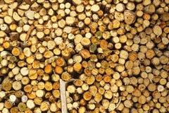 Natural wooden logs Stock Photos